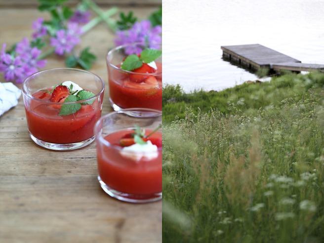 Rabarbersoppa med jordgubbar. Ta till vara.