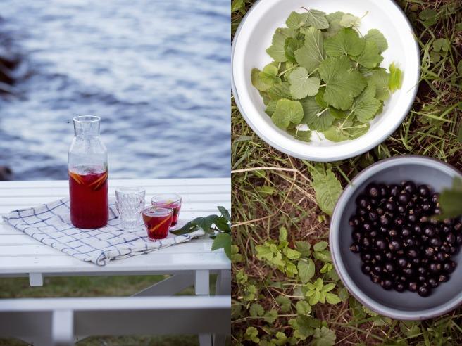 Iskallt te med svartvinbärsblad och vinbär.
