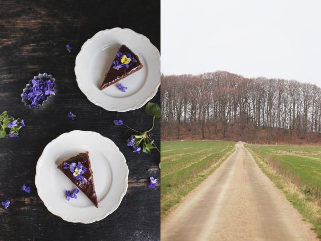 Chokladtårta med violer. Ta till vara.